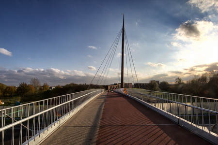 Wooden cable-stayed bridge, Harderwijk.